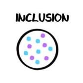 Inclusion représentée par des points bleus et violets dans un rond
